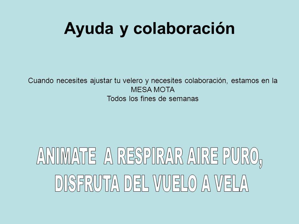 Ayuda y colaboración ANIMATE A RESPIRAR AIRE PURO,