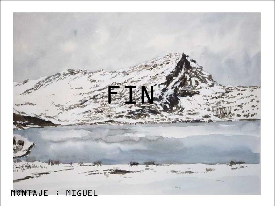 FIN MONTAJE : MIGUEL