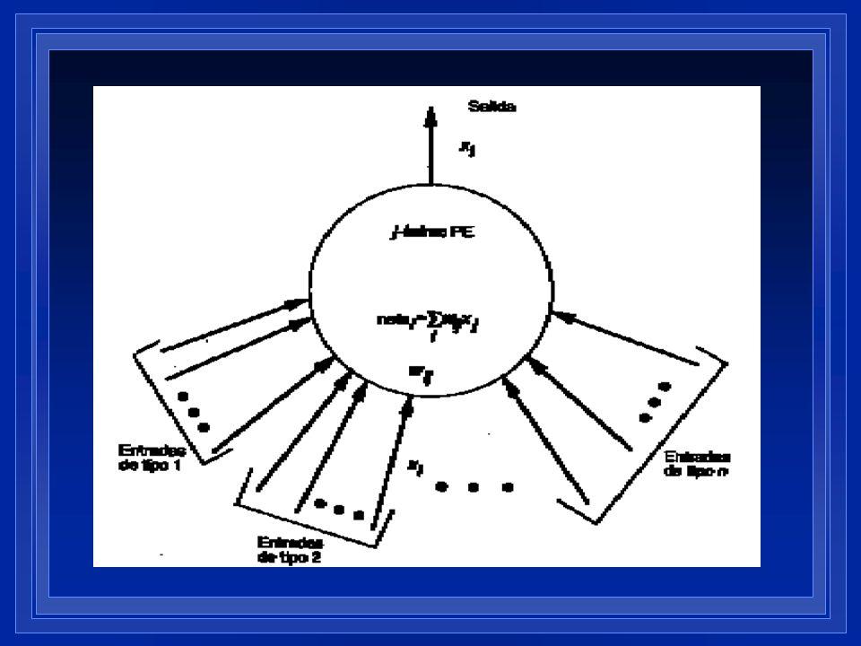 Los elementos individuales de forman la mayoría de los modelos de sistemas neuronales artificiales no suelen denominarse neuronas artificiales, son nodos o elementos de procesamiento (PEs). NO debemos pensar que existe relación biunívoca entre neuronas y Pes. Es solo una referencia, los Pes no son representación real de las neuronas.