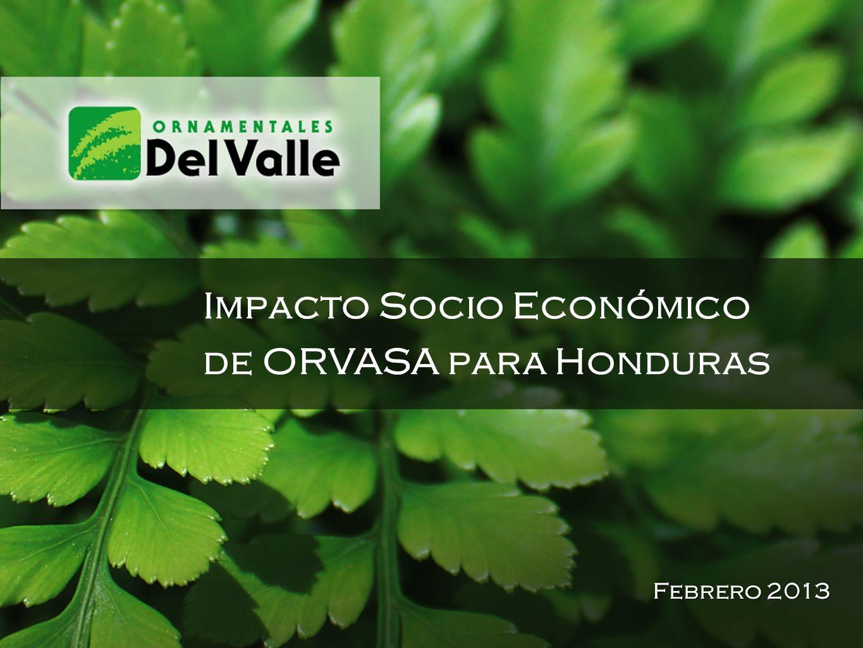 Impacto Socio Económico de ORVASA para Honduras