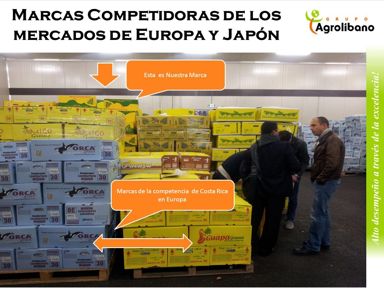 Marcas Competidoras de los mercados de Europa y Japón