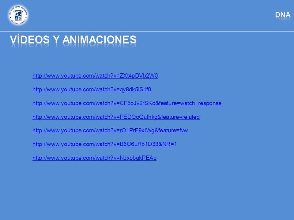 Vídeos y animaciones dna http://www.youtube.com/watch v=ZXt4pDVb2W0