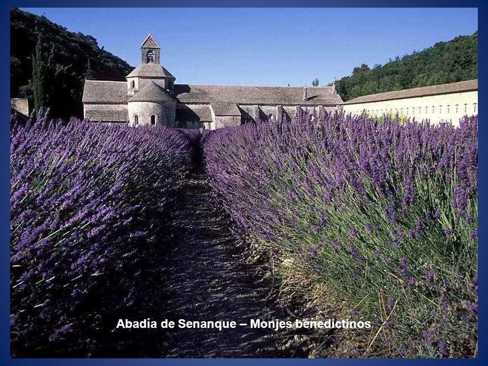 Abadía de Senanque – Monjes benedictinos