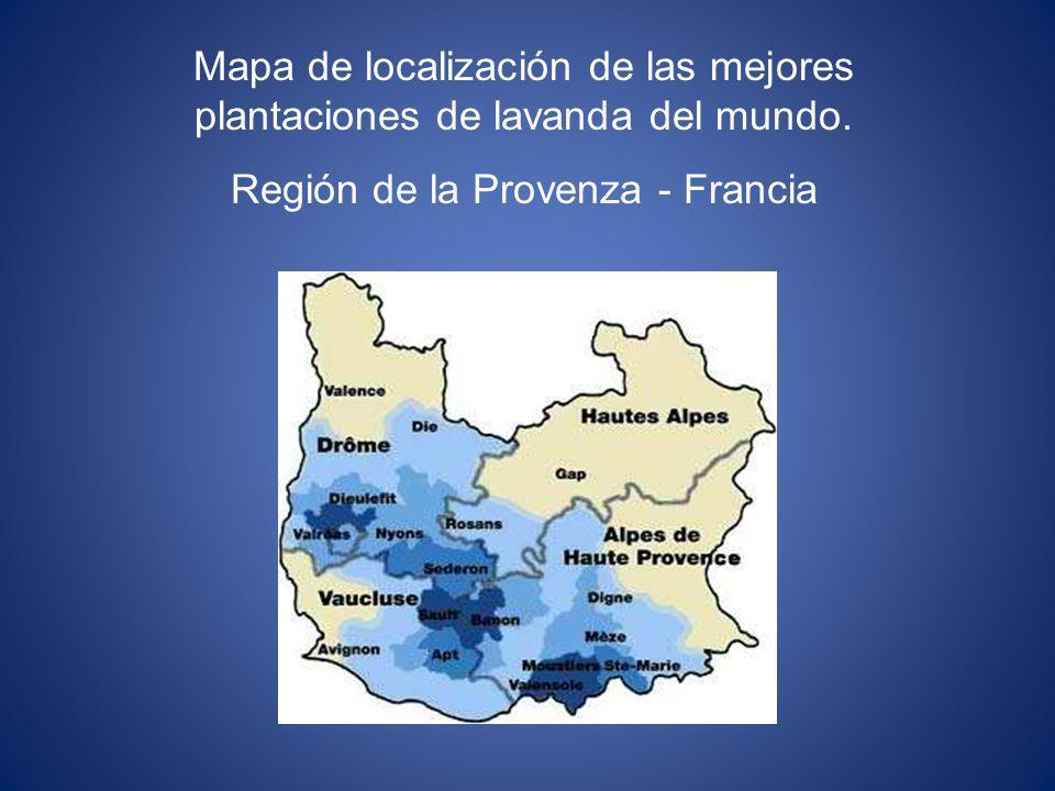 Mapa de localización de las mejores plantaciones de lavanda del mundo.