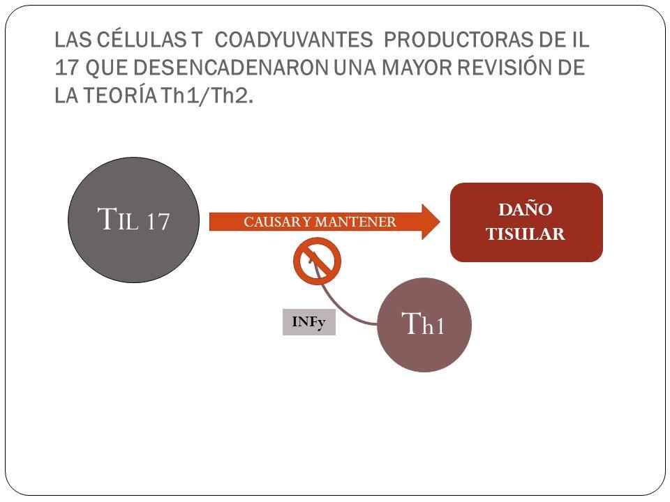 LAS CÉLULAS T COADYUVANTES PRODUCTORAS DE IL 17 QUE DESENCADENARON UNA MAYOR REVISIÓN DE LA TEORÍA Th1/Th2.