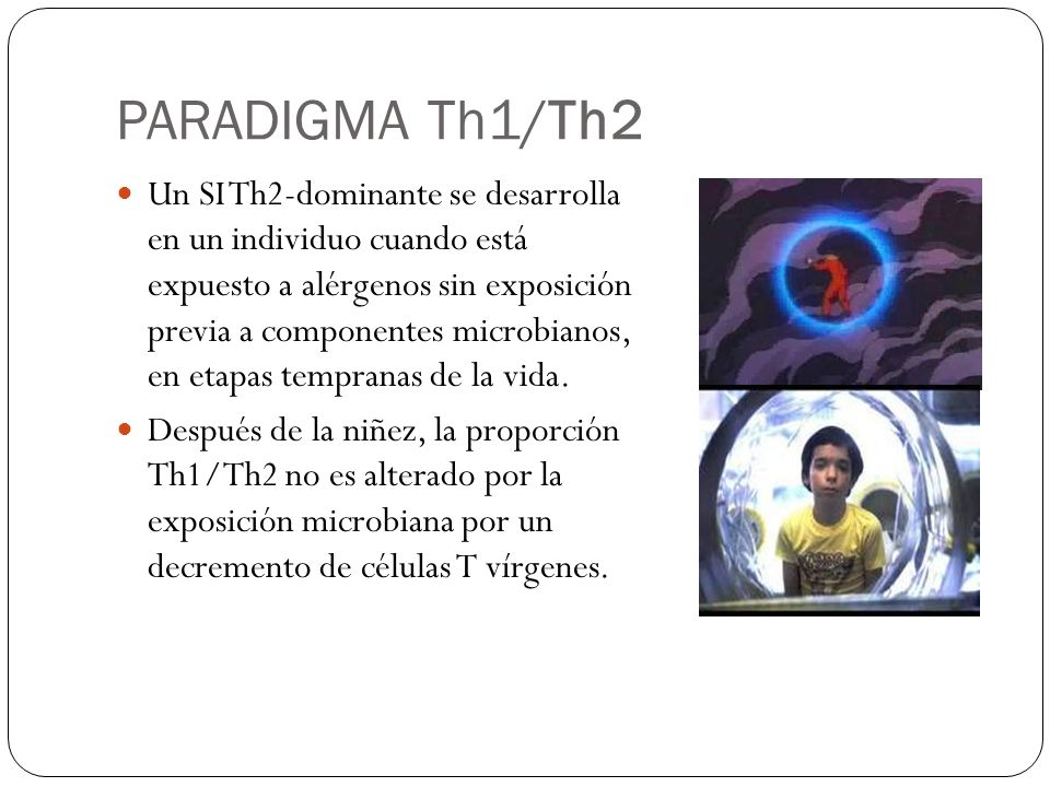 PARADIGMA Th1/Th2