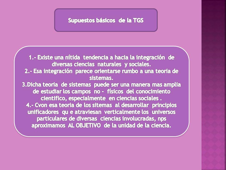 Supuestos básicos de la TGS