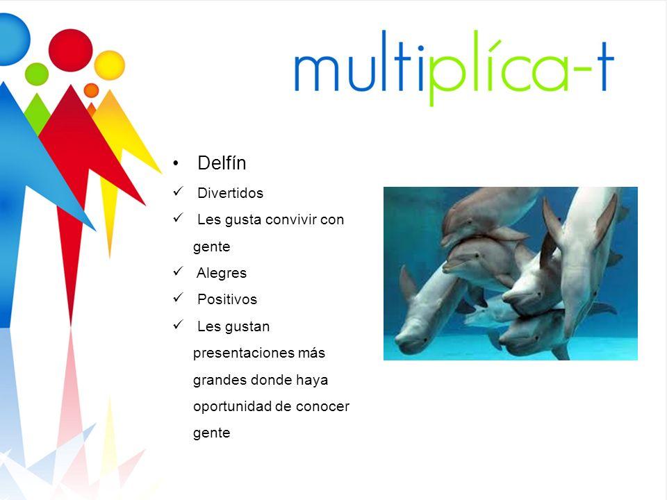Delfín Divertidos Les gusta convivir con gente Alegres Positivos
