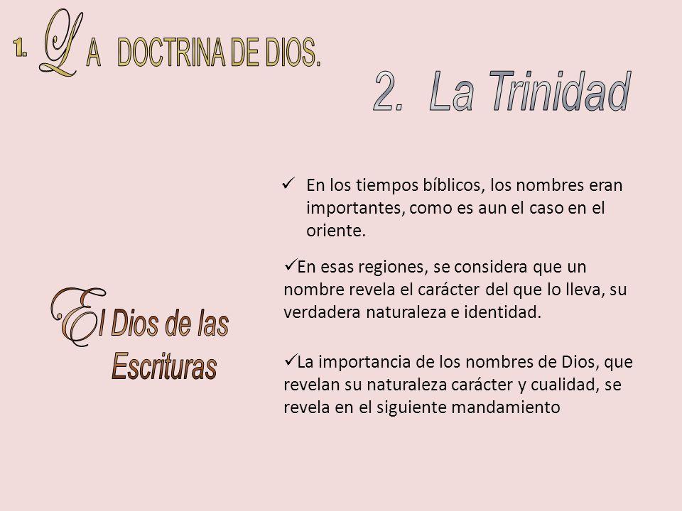 L A DOCTRINA DE DIOS. 1. 2. La Trinidad E l Dios de las Escrituras
