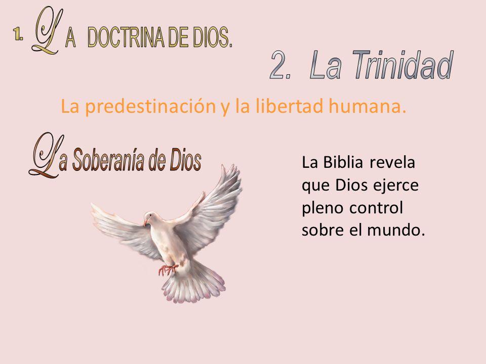 L A DOCTRINA DE DIOS. 1. 2. La Trinidad L a Soberanía de Dios