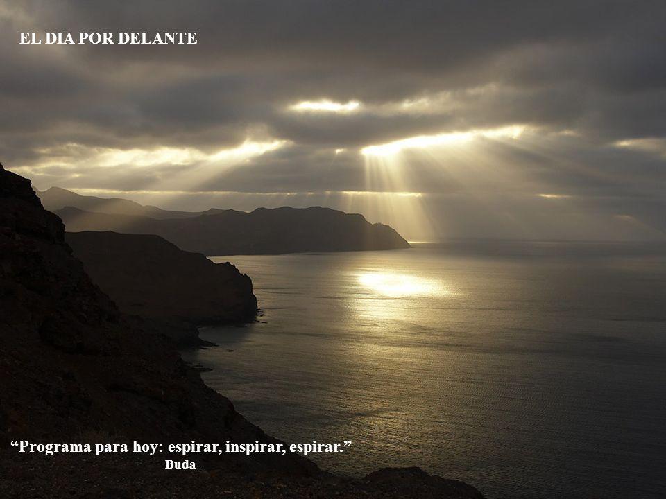 Programa para hoy: espirar, inspirar, espirar. -Buda-