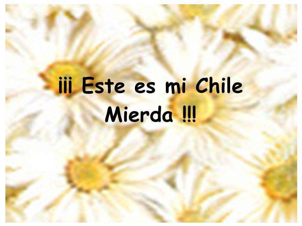 ¡¡¡ Este es mi Chile Mierda !!!