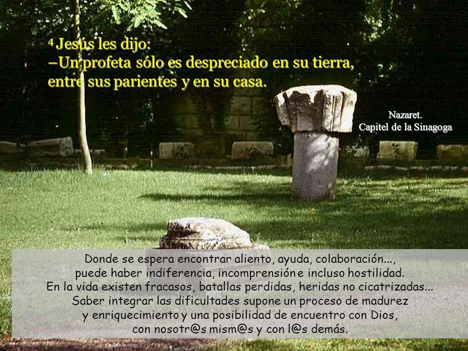 4 Jesús les dijo: –Un profeta sólo es despreciado en su tierra, entre sus parientes y en su casa.