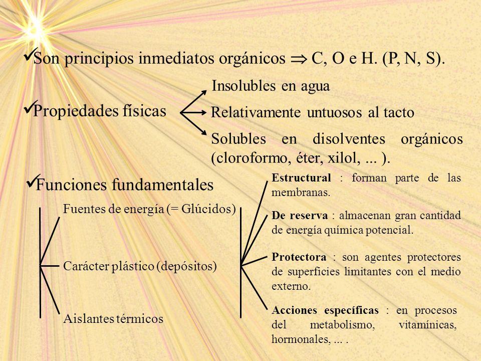 Son principios inmediatos orgánicos  C, O e H. (P, N, S).