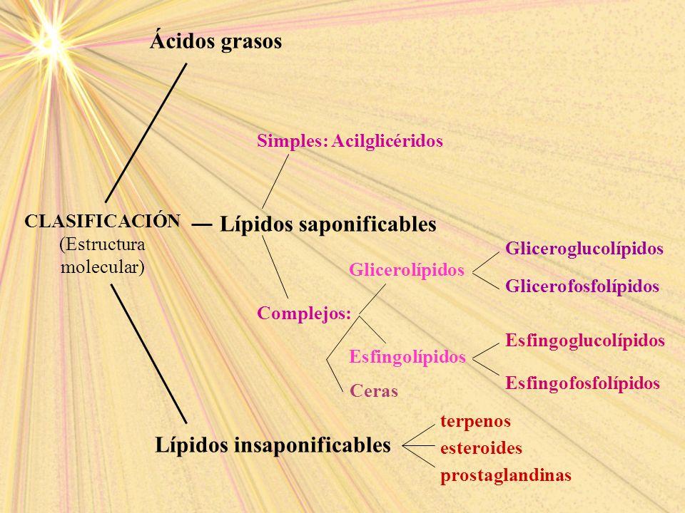 (Estructura molecular)