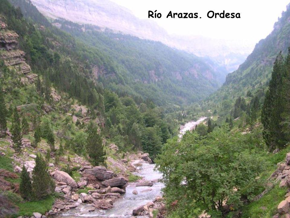 Río Arazas. Ordesa