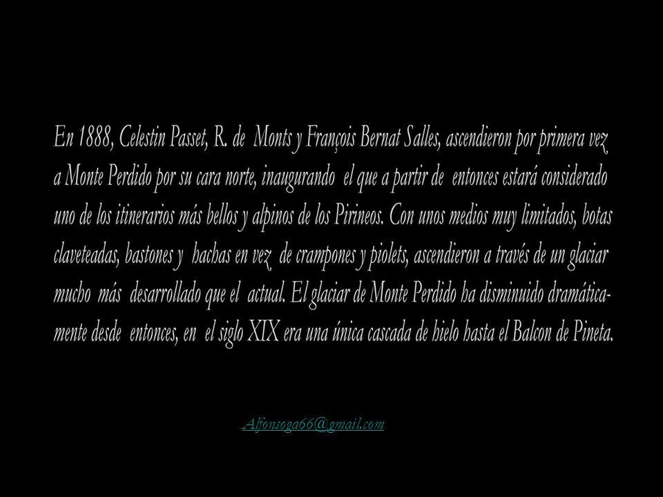 Alfonsoga66@gmail.com