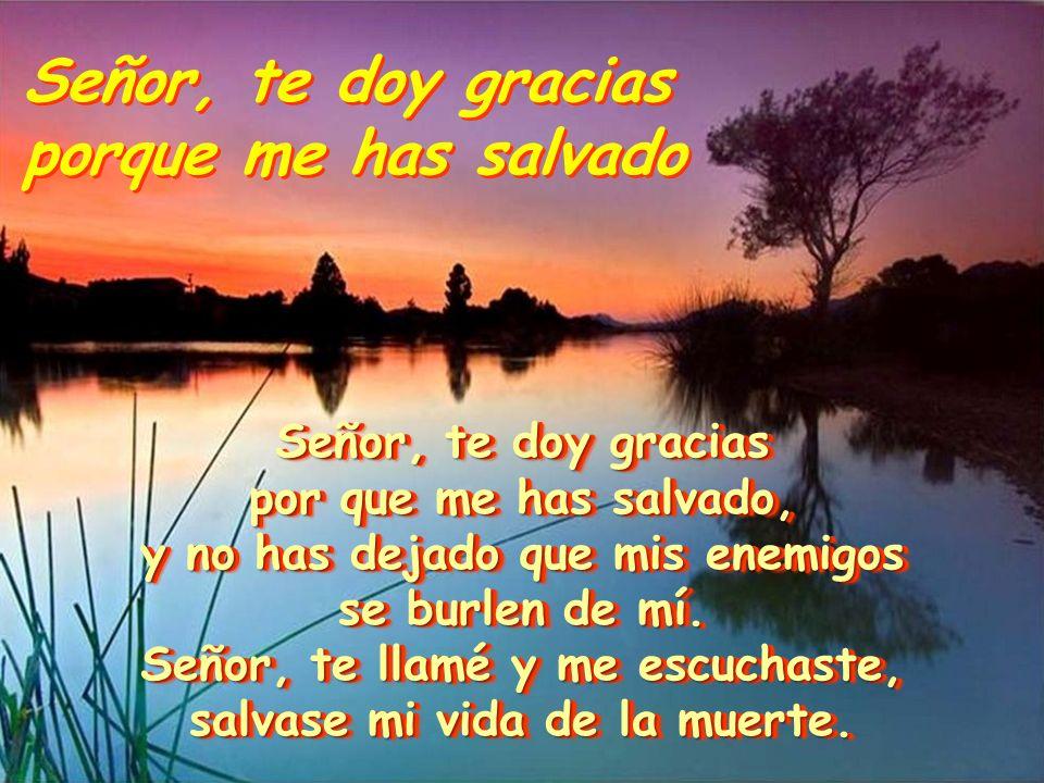 Señor, te doy gracias porque me has salvado Señor, te doy gracias