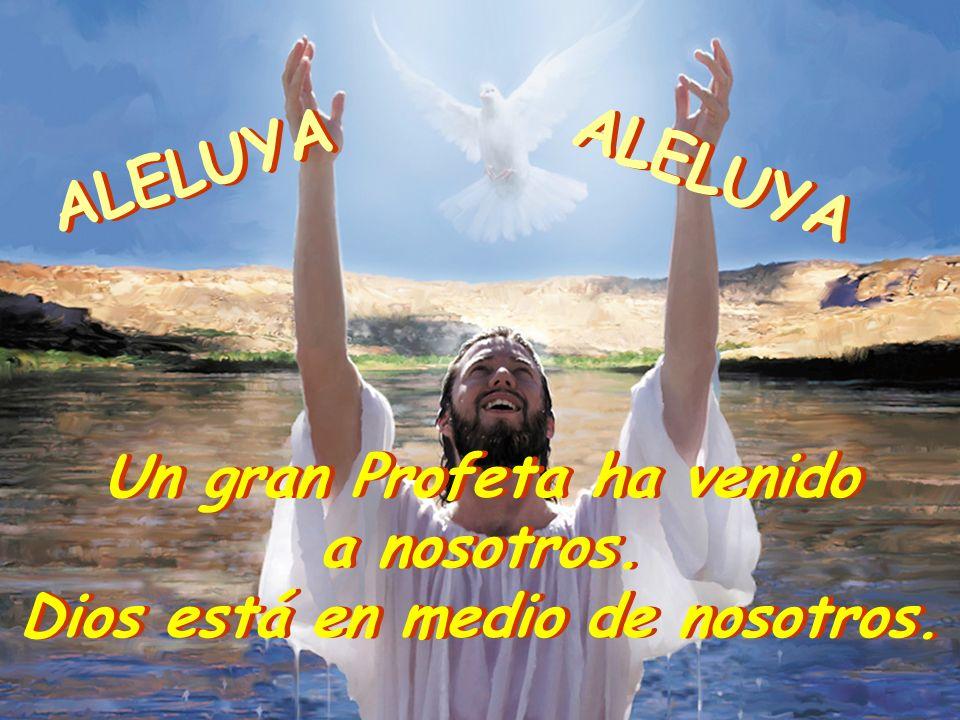 Un gran Profeta ha venido Dios está en medio de nosotros.