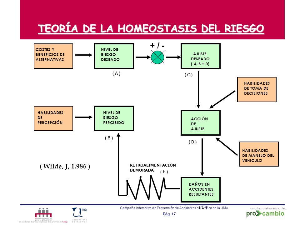 TEORÍA DE LA HOMEOSTASIS DEL RIESGO