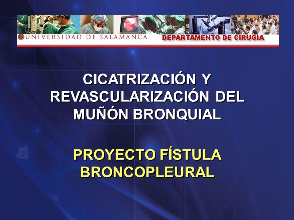PROYECTO FÍSTULA BRONCOPLEURAL