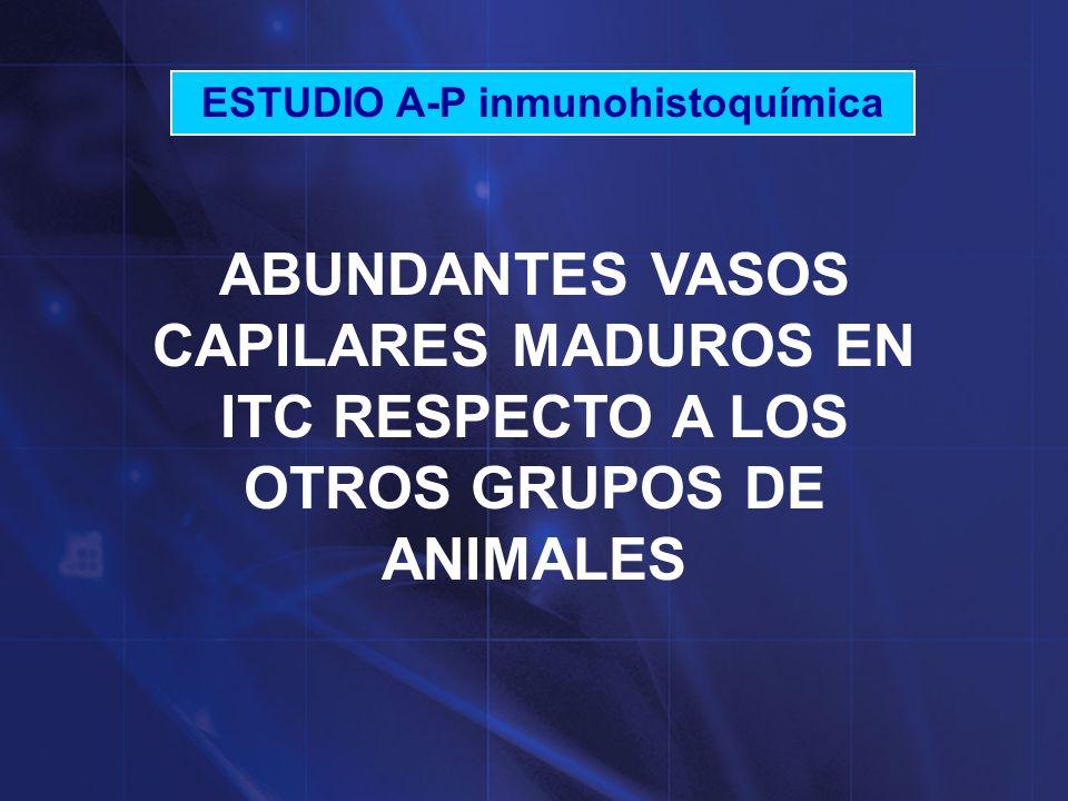 ESTUDIO A-P inmunohistoquímica