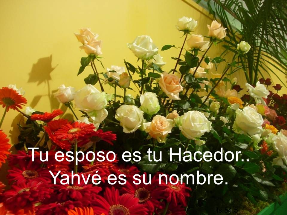 Tu esposo es tu Hacedor.. Yahvé es su nombre.