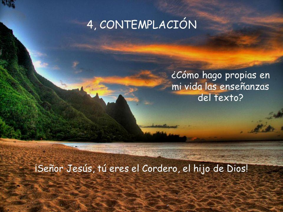 4, CONTEMPLACIÓN ¿Cómo hago propias en mi vida las enseñanzas del texto.
