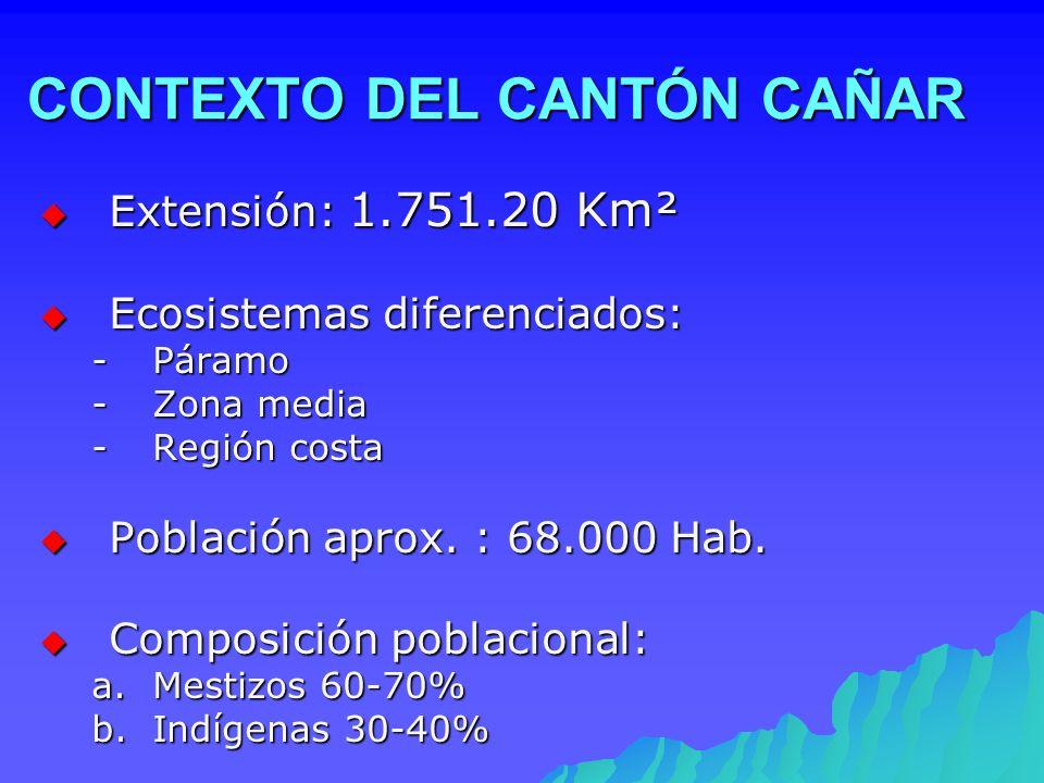 CONTEXTO DEL CANTÓN CAÑAR