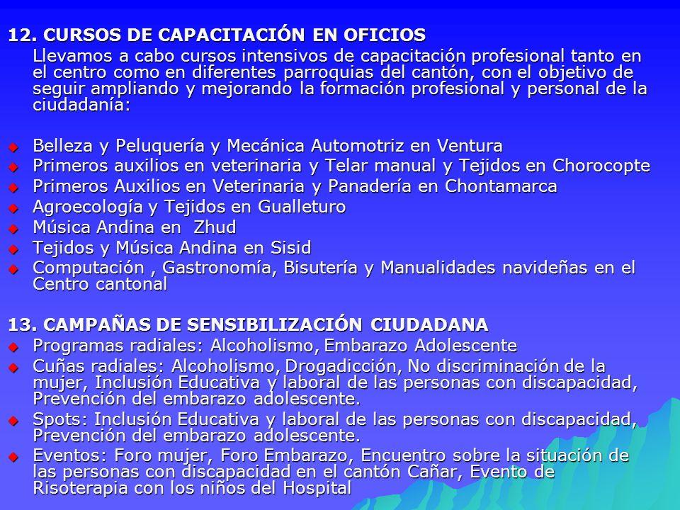 12. CURSOS DE CAPACITACIÓN EN OFICIOS
