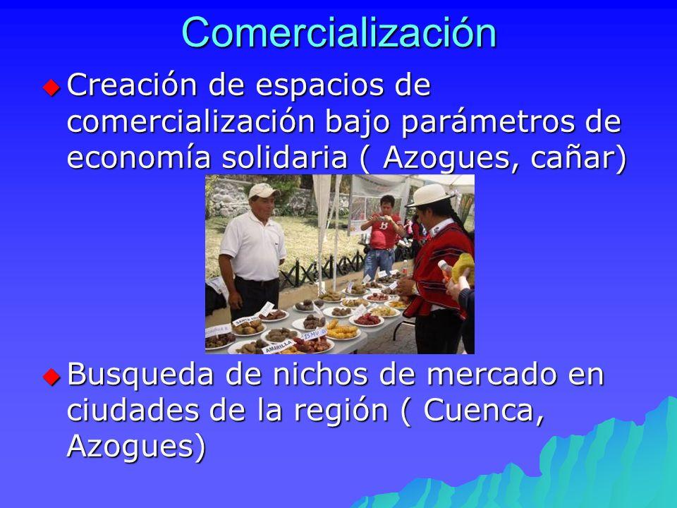 Comercialización Creación de espacios de comercialización bajo parámetros de economía solidaria ( Azogues, cañar)