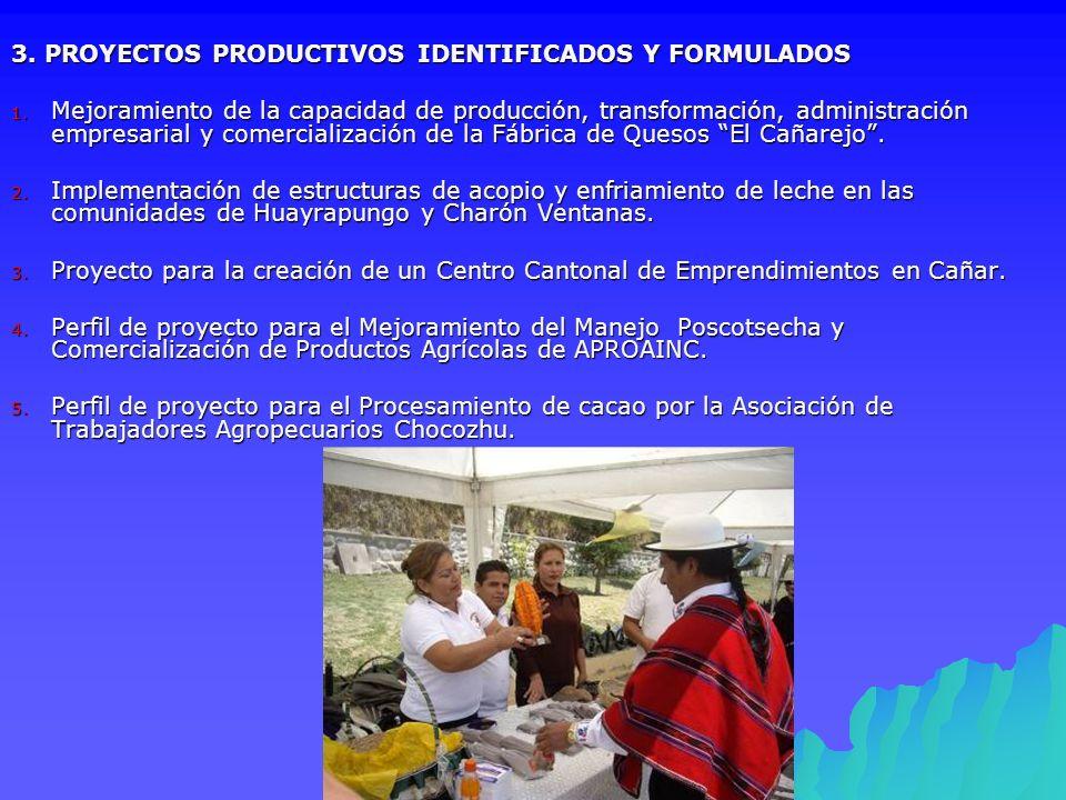 3. PROYECTOS PRODUCTIVOS IDENTIFICADOS Y FORMULADOS