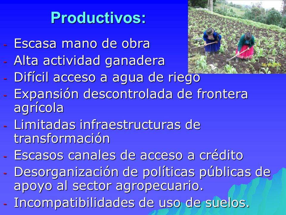 Productivos: Escasa mano de obra Alta actividad ganadera