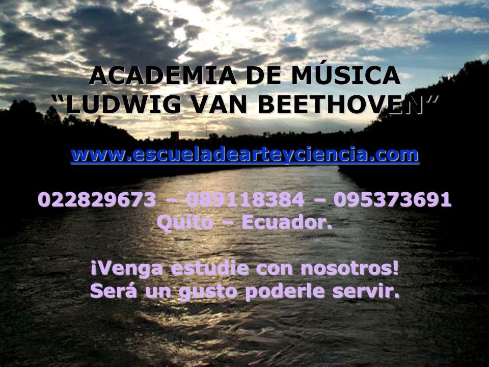 ACADEMIA DE MÚSICA LUDWIG VAN BEETHOVEN