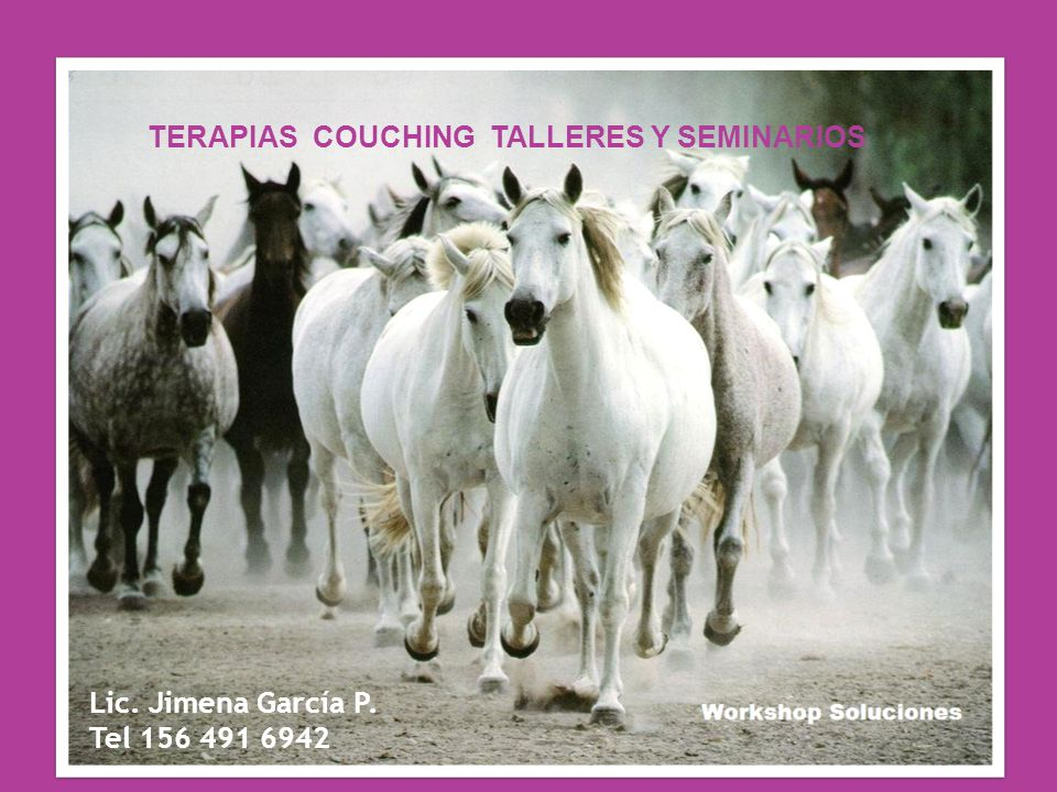 TERAPIAS COUCHING TALLERES Y SEMINARIOS