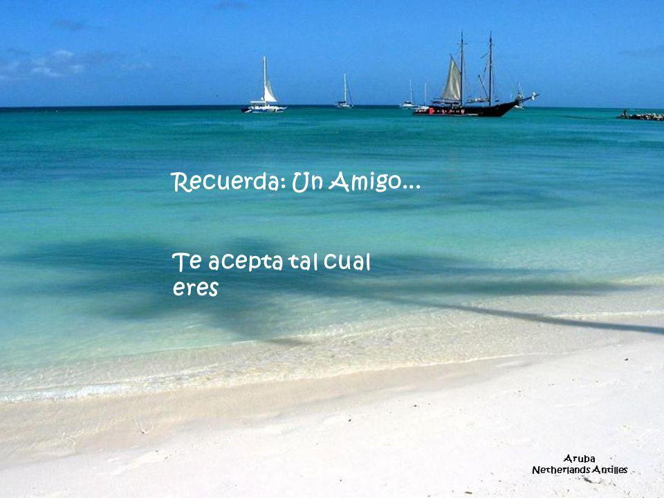Recuerda: Un Amigo... Te acepta tal cual eres Aruba