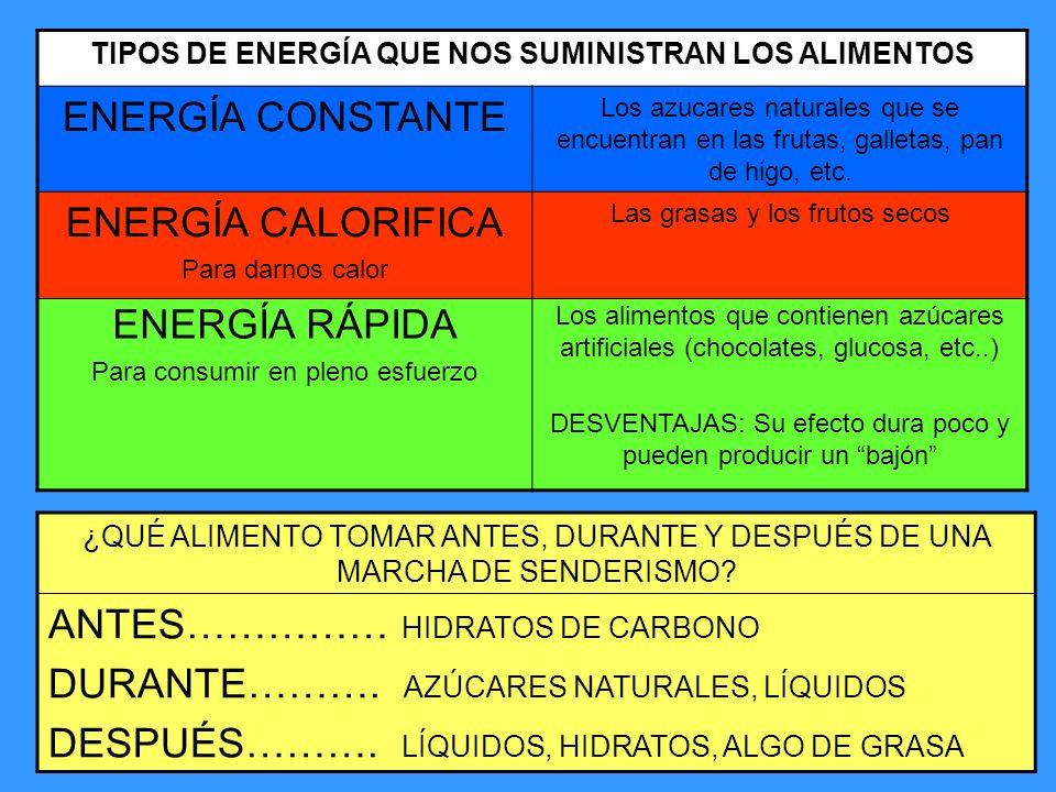 TIPOS DE ENERGÍA QUE NOS SUMINISTRAN LOS ALIMENTOS