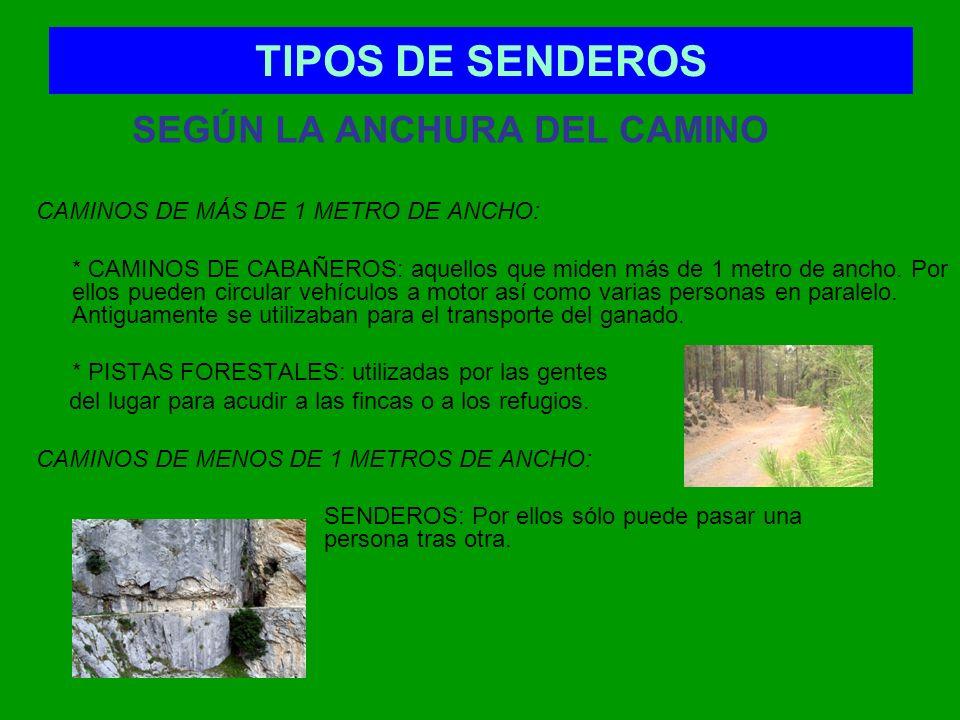 TIPOS DE SENDEROS SEGÚN LA ANCHURA DEL CAMINO