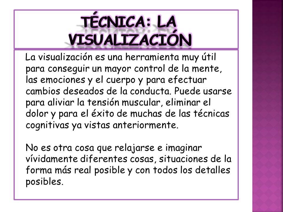 TÉCNICA: La visualización