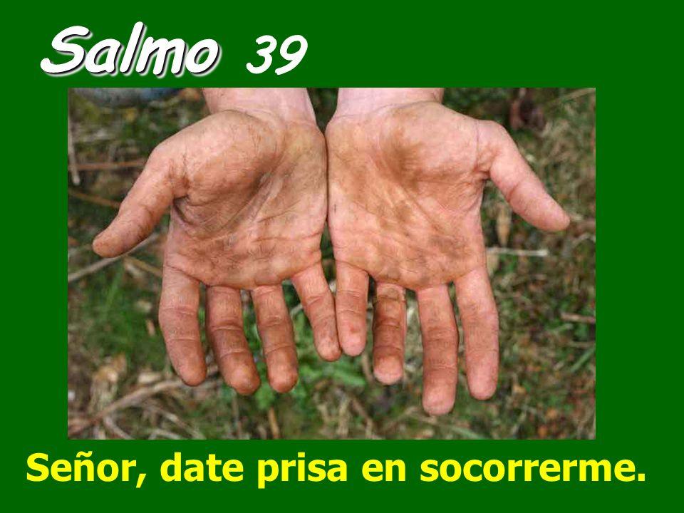 Salmo 39 Señor, date prisa en socorrerme.