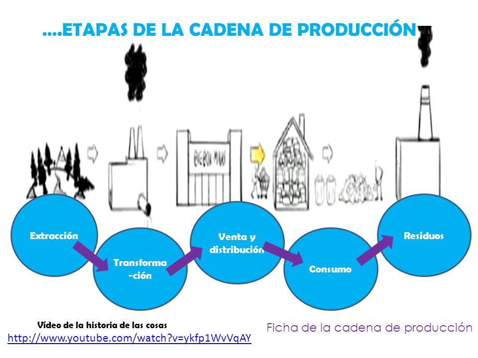 ….ETAPAS DE LA CADENA DE PRODUCCIÓN