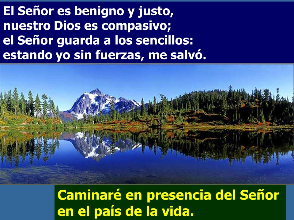 Caminaré en presencia del Señor en el país de la vida.