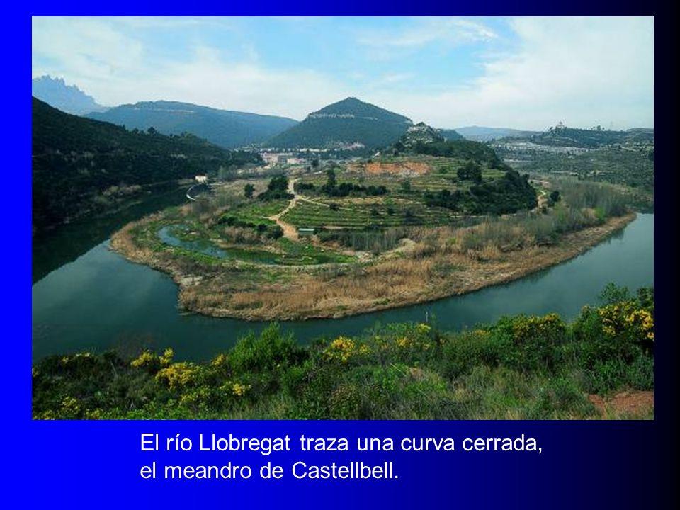 El río Llobregat traza una curva cerrada, el meandro de Castellbell.