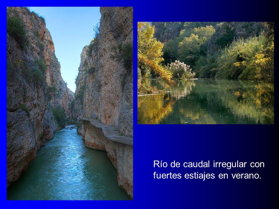 RÍO SEGURA Río de caudal irregular con fuertes estiajes en verano.