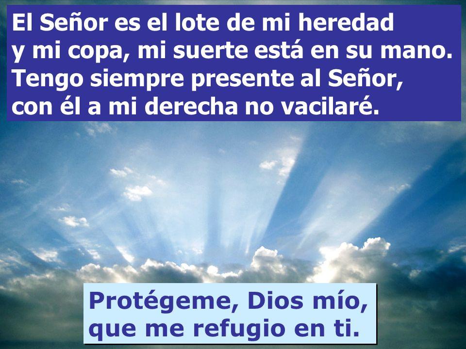 El Señor es el lote de mi heredad y mi copa, mi suerte está en su mano