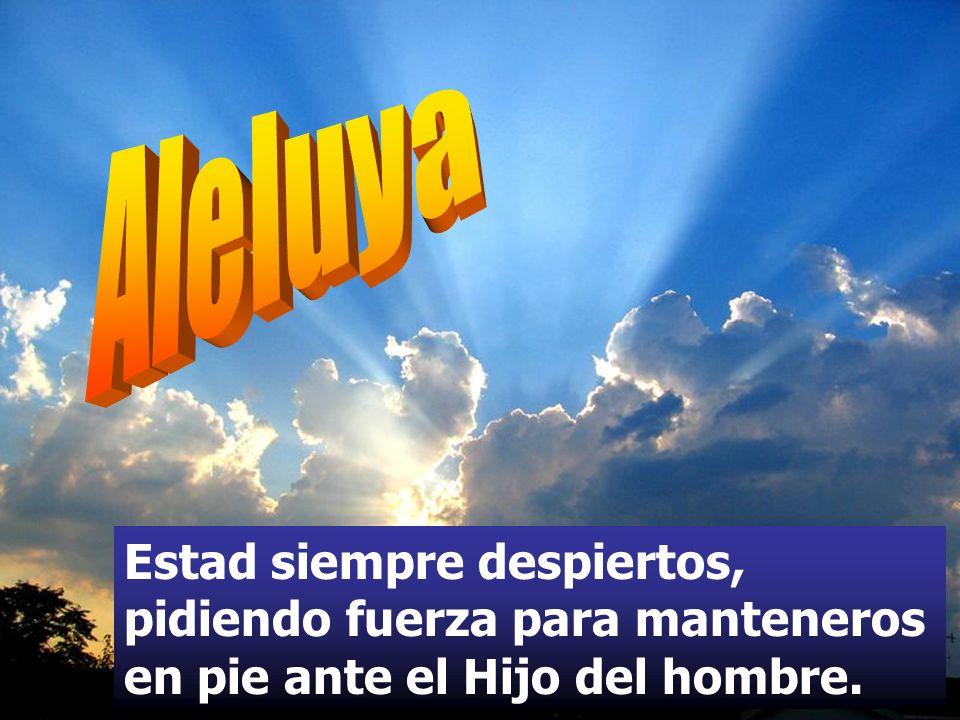 Aleluya Estad siempre despiertos, pidiendo fuerza para manteneros en pie ante el Hijo del hombre.