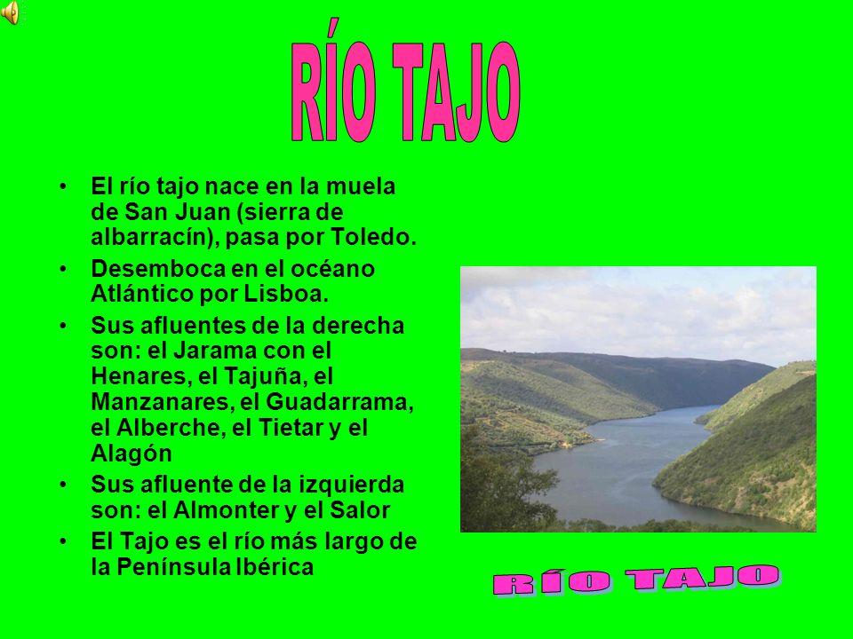 RÍO TAJO El río tajo nace en la muela de San Juan (sierra de albarracín), pasa por Toledo. Desemboca en el océano Atlántico por Lisboa.