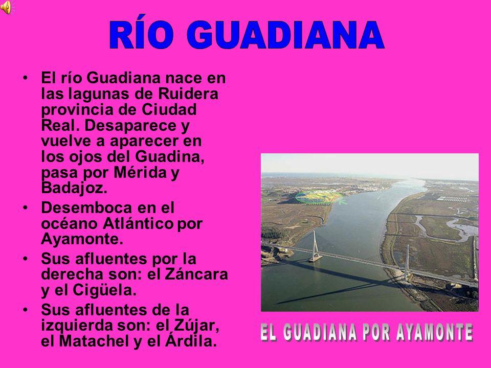 EL GUADIANA POR AYAMONTE