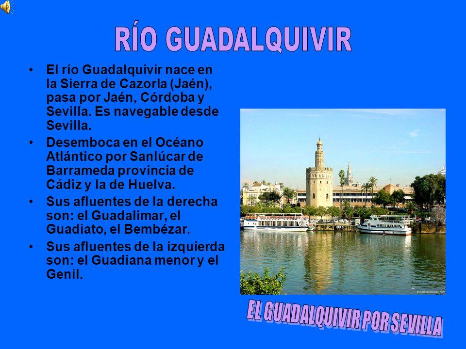 EL GUADALQUIVIR POR SEVILLA