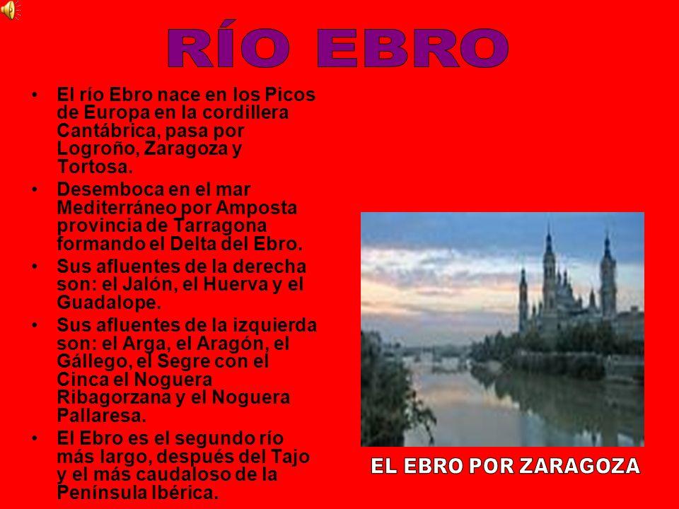 RÍO EBRO El río Ebro nace en los Picos de Europa en la cordillera Cantábrica, pasa por Logroño, Zaragoza y Tortosa.
